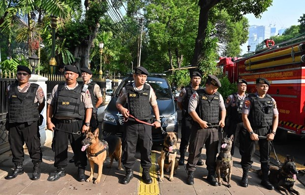 Indonesia establishes military elite unit to fight terrorism hinh anh 1