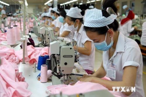 Over 79,000 new enterprises established in January-July hinh anh 1
