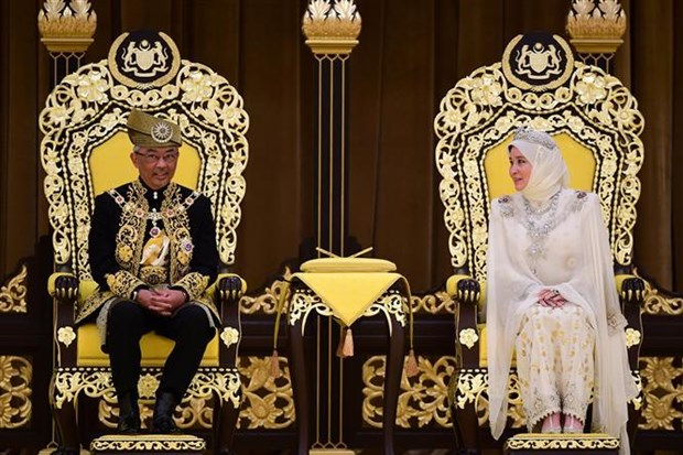 Sultan of Pahang state enthroned as Malaysia's new king hinh anh 1