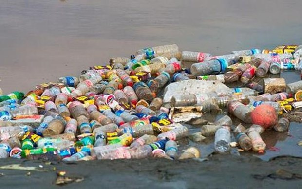 Cambodia fines plastic waste importer 250,000 USD hinh anh 1