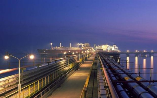 Foreign interest in Vietnam's LNG sector remains high hinh anh 1