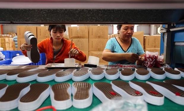 Most labour strikes occur at FDI enterprises: report hinh anh 1