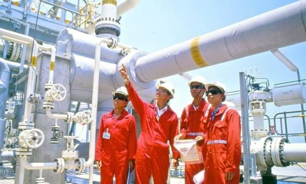 Oil group pays nearly 2.6 billion USD to state in 7 months hinh anh 1