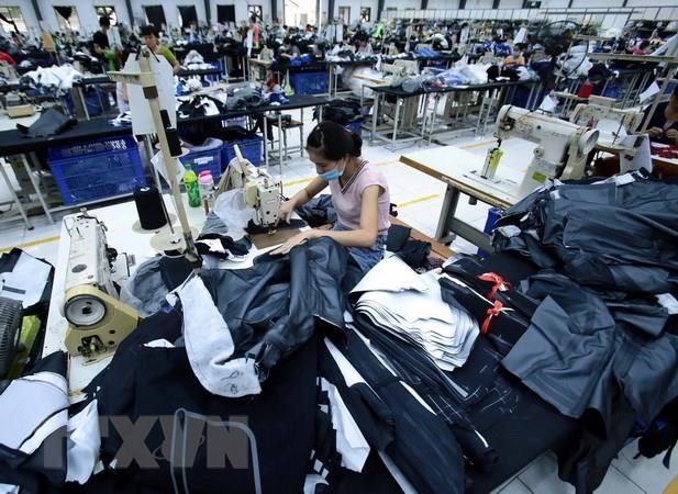 Five products to see stronger export to EU: ministry hinh anh 1