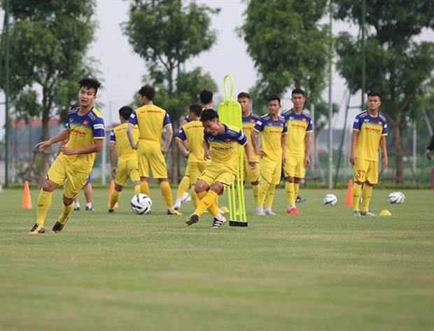 Coach Park Hang-seo calls 28 players for training hinh anh 1