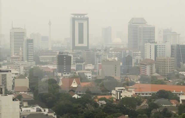 Indonesia curbs private cars to cut air pollution hinh anh 1