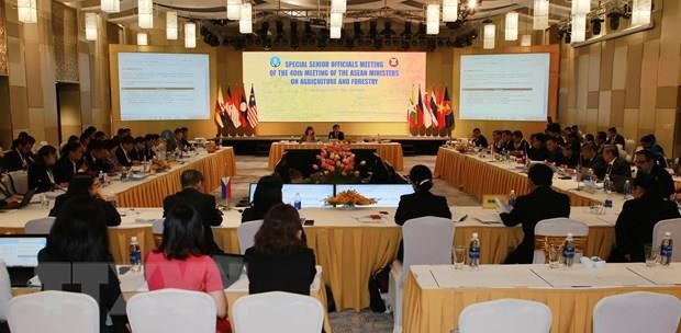 18th Special SOM of 18th AMAF+3 wraps up in Thua Thien-Hue hinh anh 1