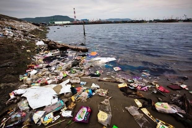 Action plan for marine debris reduction to be built hinh anh 1