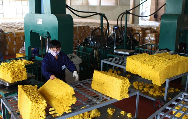 Upturn seen in rubber exports in seven months hinh anh 1