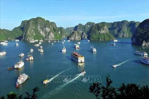 Adjustments to overall planning of Ha Long city announced hinh anh 1