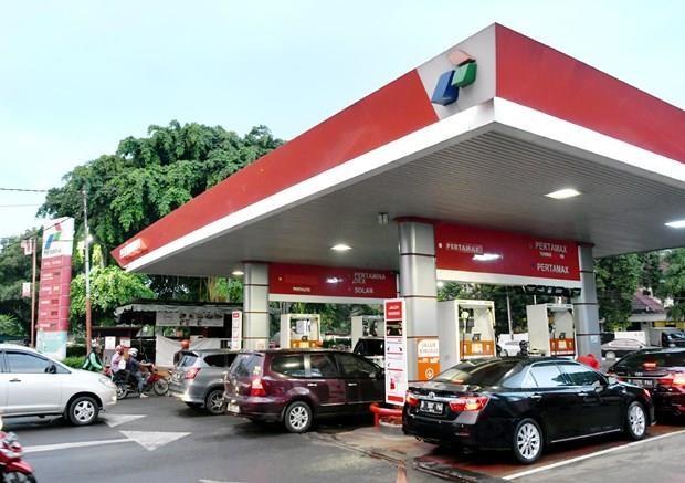 EU slaps anti-subsidy duties on Indonesian biodiesel hinh anh 1