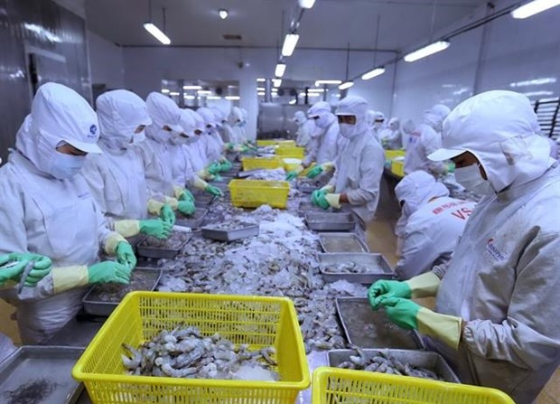 Shrimp exports expected to pick up in second half hinh anh 1