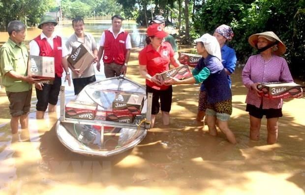 Urgent relief offered to flood-hit Central Highlands, southern localities hinh anh 1