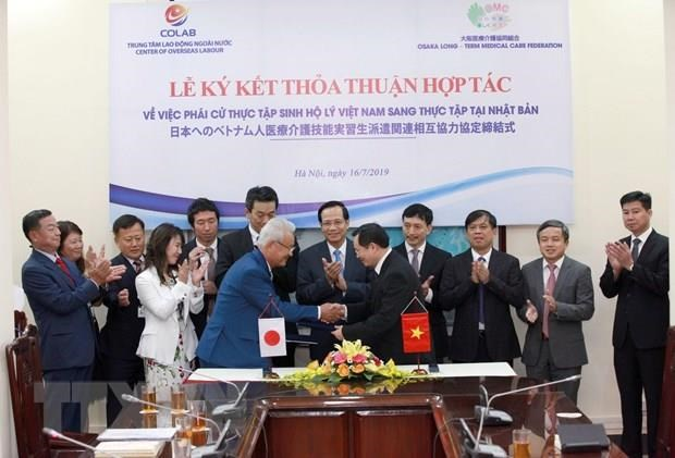 Vietnam, Japan step up human resources development cooperation hinh anh 1