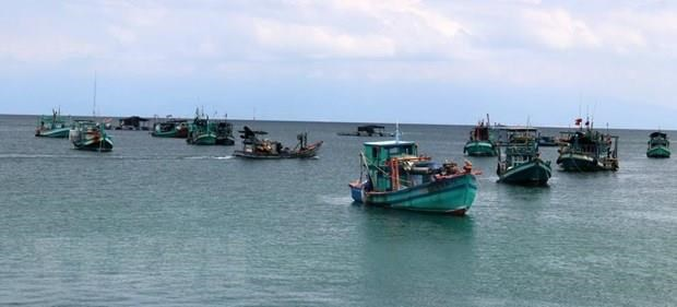 Khanh Hoa works to fight IUU fishing hinh anh 1
