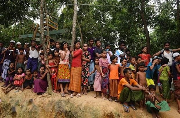 Second attempt planned to return Rohingya Muslims hinh anh 1