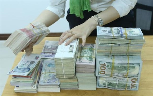 More steps to be taken to downsize foreign currency loans hinh anh 1