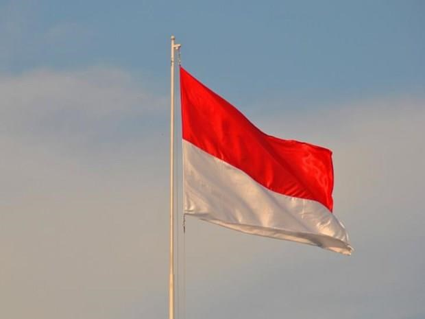 Indonesia's Independence Day observed in Hanoi hinh anh 1