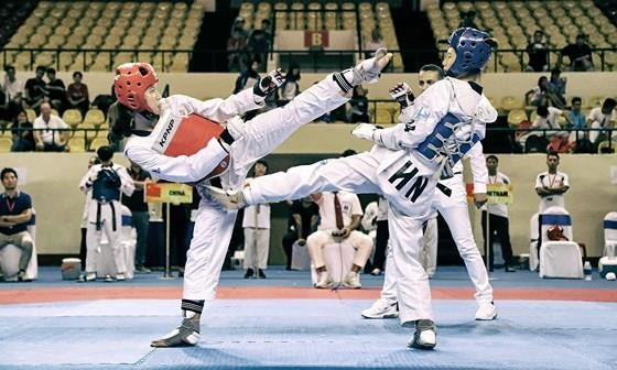 Vietnam win 35 golds at Asian Open Taekwondo Championship hinh anh 1