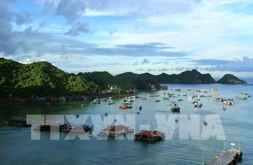 Workshop seeks solutions to promote tourism development hinh anh 1