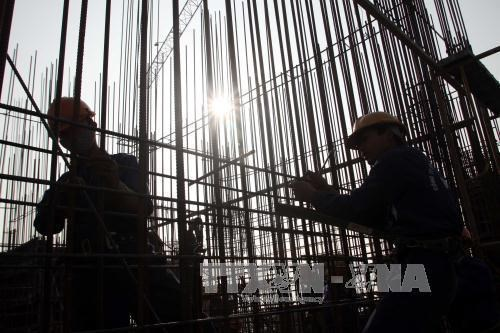 Construction sector eyes 65 percent of trained personnel by 2020 hinh anh 1