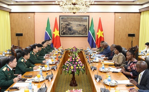 Vietnam, South Africa agree to maintain defence policy dialogue hinh anh 1