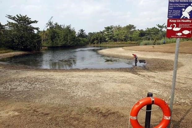 Singapore's dry spell likely caused by Indian Ocean Dipole hinh anh 1