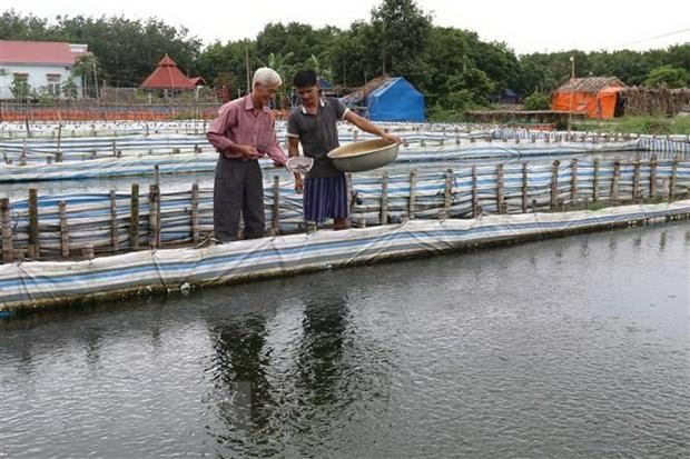 Solutions sought in water stocking in Mekong Delta hinh anh 1