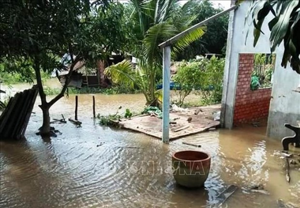 Ben Tre strives to ensure safety for locals in erosion-prone areas hinh anh 1