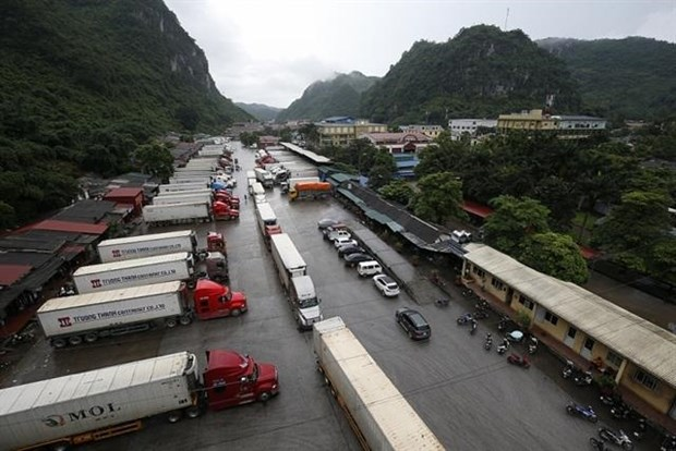Imports stuck at border gates due to new Chinese rules hinh anh 1