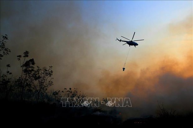 Indonesia: Four helicopters deployed to douse forest fires hinh anh 1