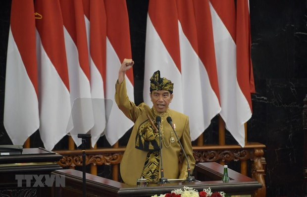 Indonesian President announces site of new capital hinh anh 1