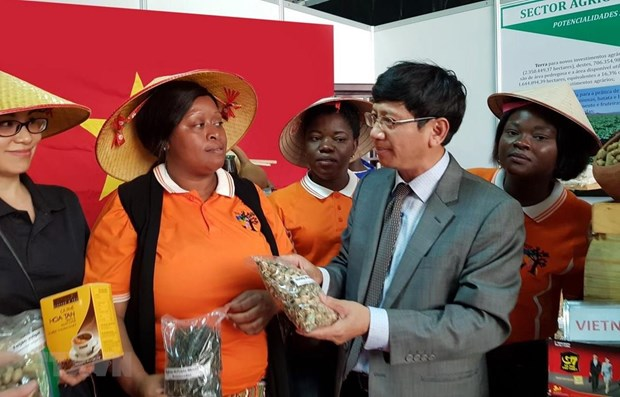 Vietnam attends fair in Mozambique hinh anh 1