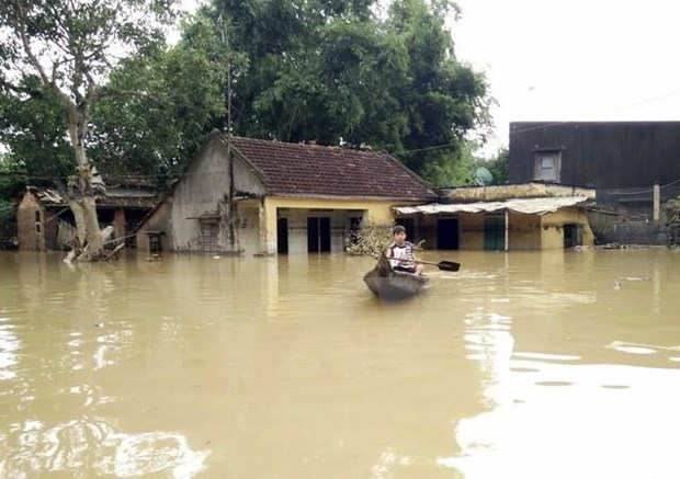 EU grants 100,000 EUR to flood victims in Vietnam hinh anh 1