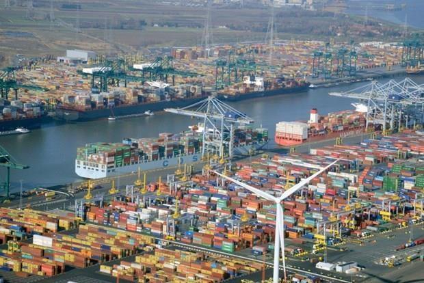 Belgium's Antwerp expands trade ties with Vietnam hinh anh 1