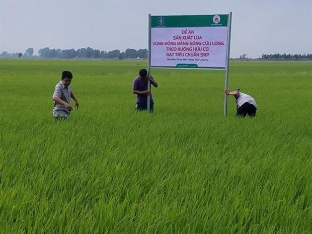 Vietnam to promote exports of organic fertilisers hinh anh 1