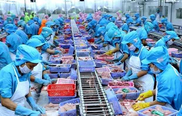 Vietnam's seafood exports rise but challenges continue hinh anh 1