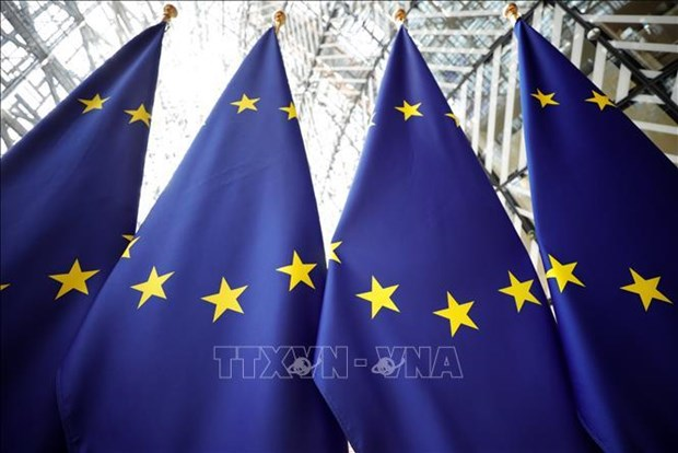 Unilateral actions in East Sea weaken regional maritime security: EU hinh anh 1