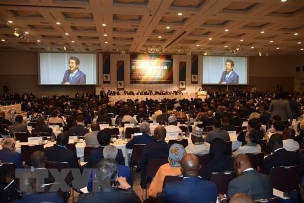 Deputy FM attends Tokyo int'l conference on African development hinh anh 1