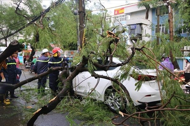 Storm Podul causes three deaths nationwide hinh anh 1