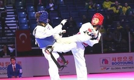 Vietnam taekwondo wins first gold at martial arts mega event in RoK hinh anh 1