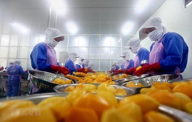 Vietnam's export turnover up 7.3 percent in eight months hinh anh 1