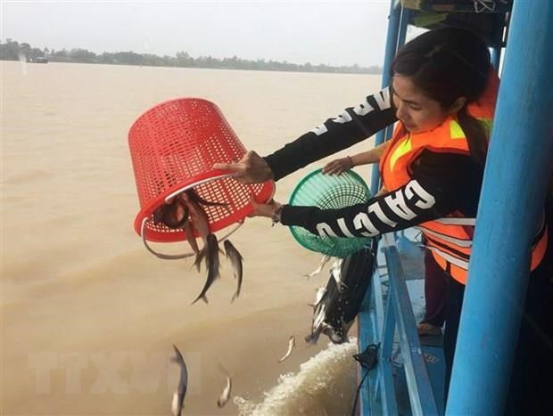 Plan to boost conservation, sustainable exploitation of aquatic resources hinh anh 1