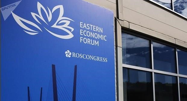 Vietnam attends fifth Eastern Economic Forum in Russia hinh anh 1