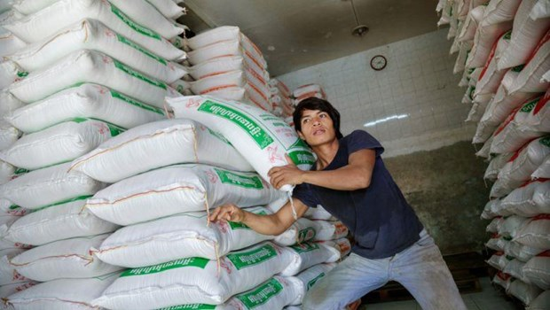 Cambodia exports nearly 133,000 tonnes of rice to China hinh anh 1