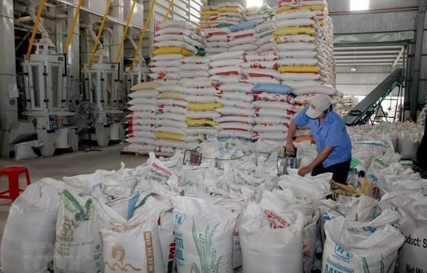 Eight-month rice exports down hinh anh 1