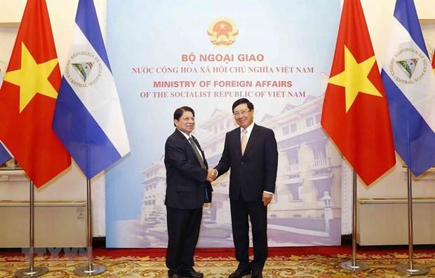 Nicaragua values ties with Vietnam: Nicaraguan FM hinh anh 1