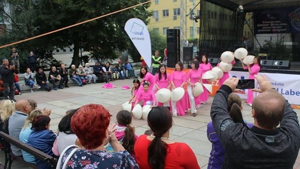 Vietnamese expats in Czech Republic joins multicultural festival hinh anh 1
