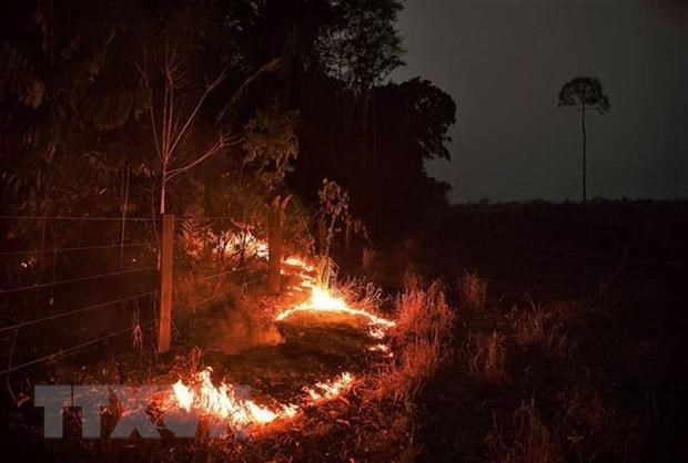 Over 2,500 fire hotspots observed in ASEAN last week hinh anh 1