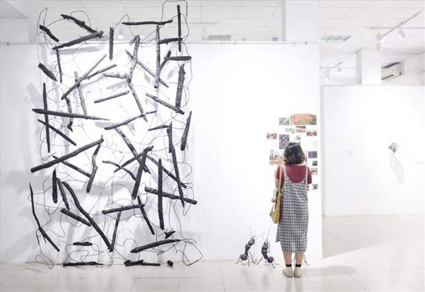Artists display works inspired by insects hinh anh 1
